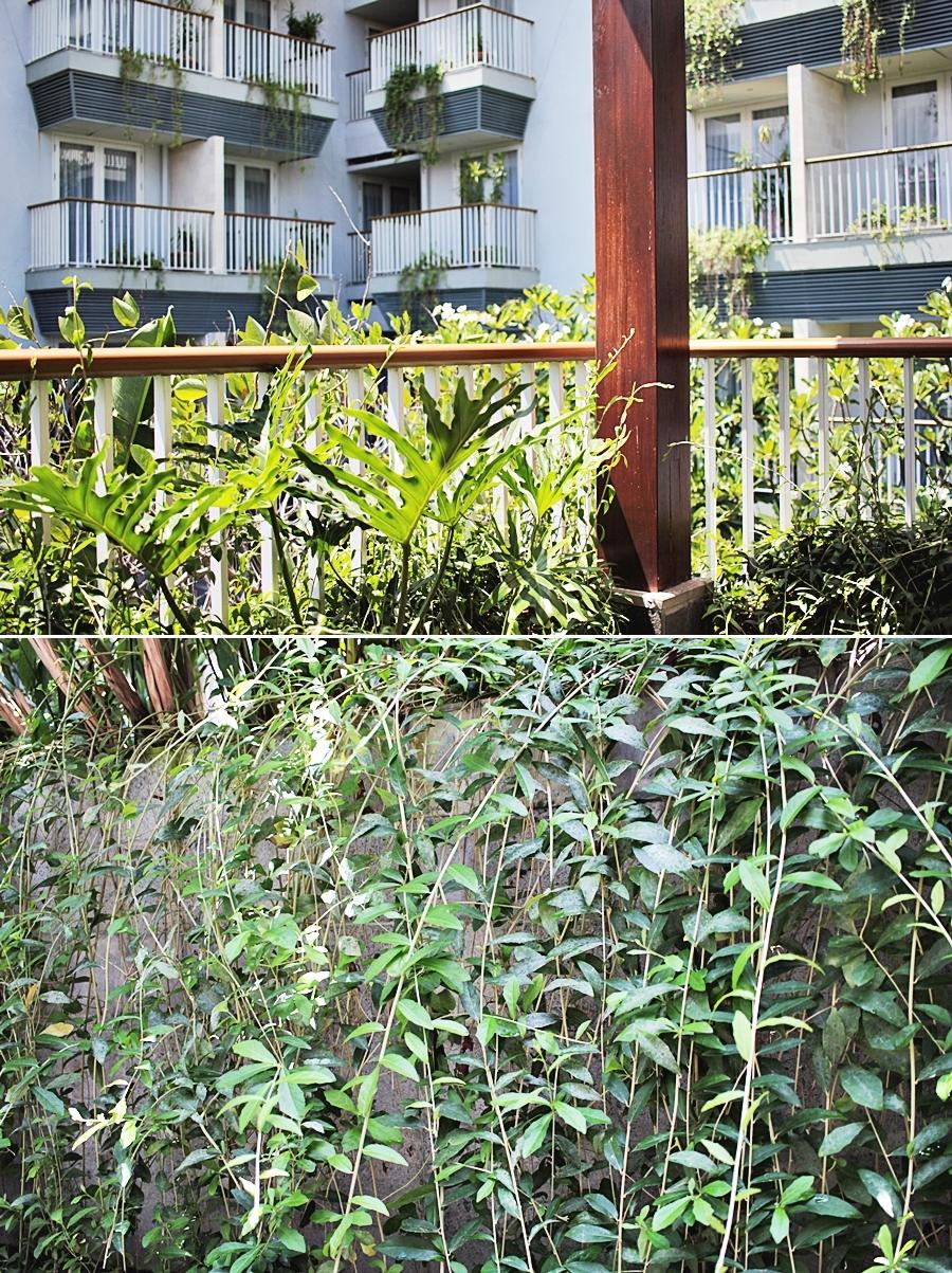 garden oasais bali hotel