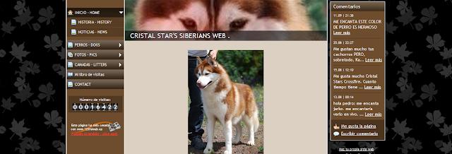 Portada Pagina Web Cristal Stars Siberians