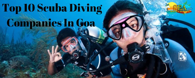 Top 10 Scuba Diving Companies In Goa