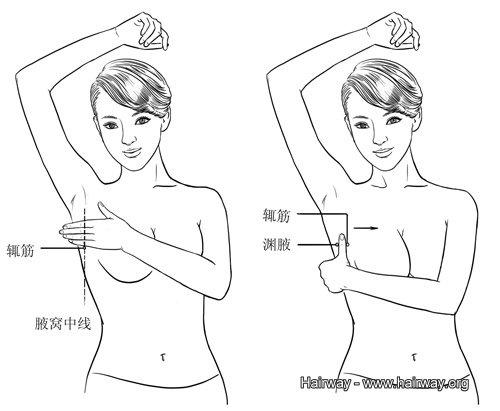 淵腋、輒筋穴道按摩 | 淵腋、輒筋位置圖