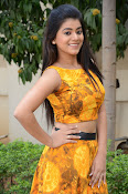 Yamini Bhaskar at Titanic movie press meet-thumbnail-10
