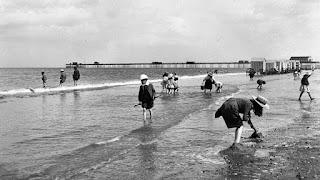 sea paddling