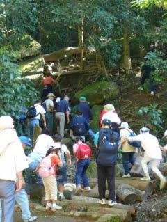Expedicionários na Trilha do Pai Zé, no Pico do Jaraguá, em 2010. Foto: acervo Daruma São Paulo