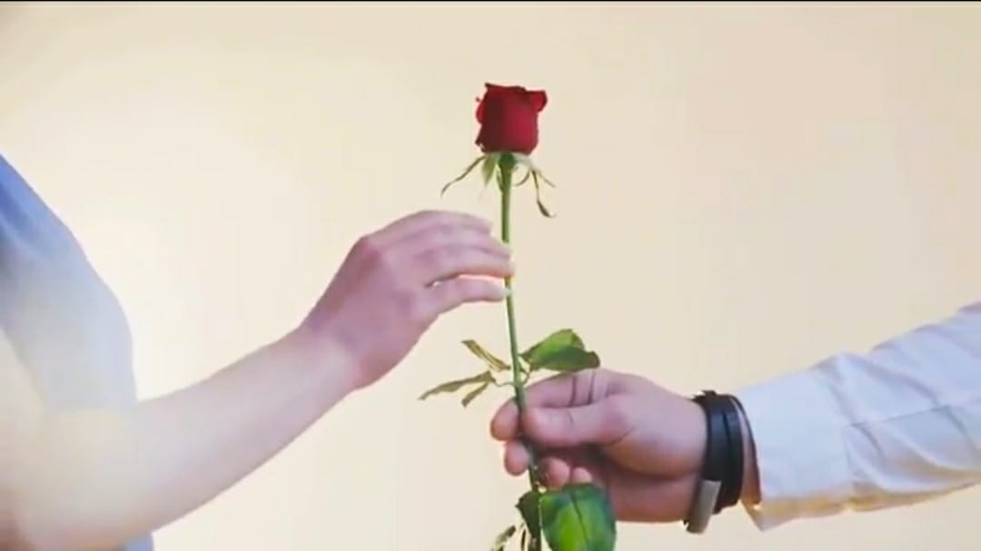 Happy Valentinesday Whatsapp Status Best Valentinesday Video