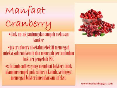 Manfaat Cranberry untuk Infeksi Saluran Kemih