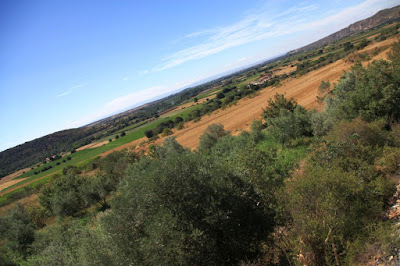 Paisaje entre Lleida y Balaguer