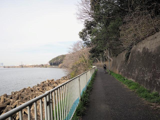 江戸川 市川