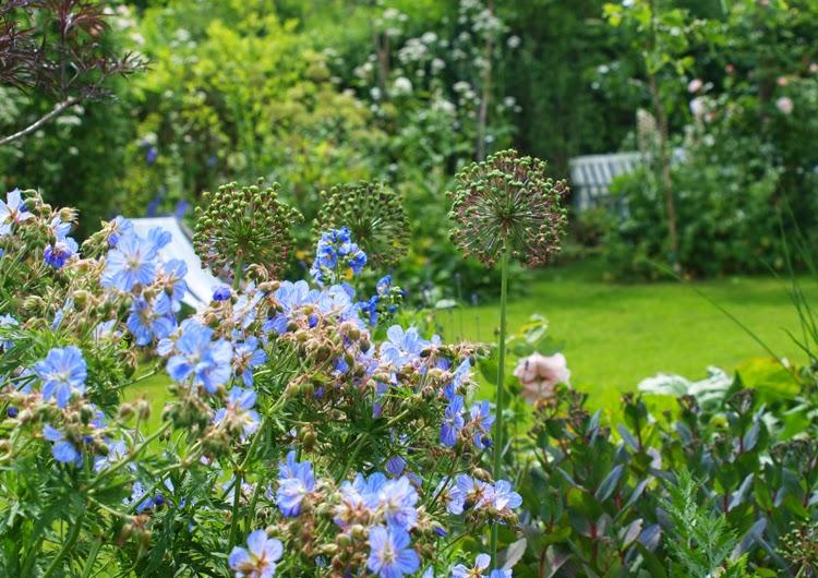 Frodig have med blomster som rumdeler mellem haverummene