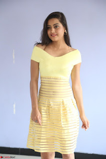 Shipra gaur in V Neck short Yellow Dress ~  074.JPG