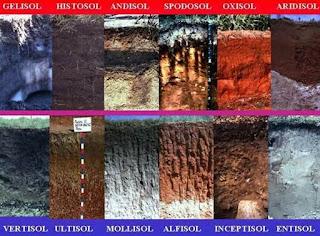 Jenis-Jenis Tanah yang Subur dan Tidak Subur
