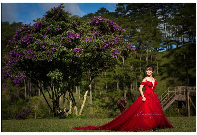 các địa điểm chụp ảnh cưới đẹp ở Đà Lạt