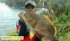 Rimba Naga Fishing, Dari Hobi Mancing Jadi Toko Pancing