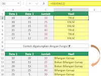 Rumus Excel Mencari Bilangan Ganjil dan Genap
