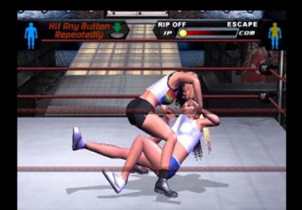 WWE SmackDown Here Comes The Pain PC Game Free Download