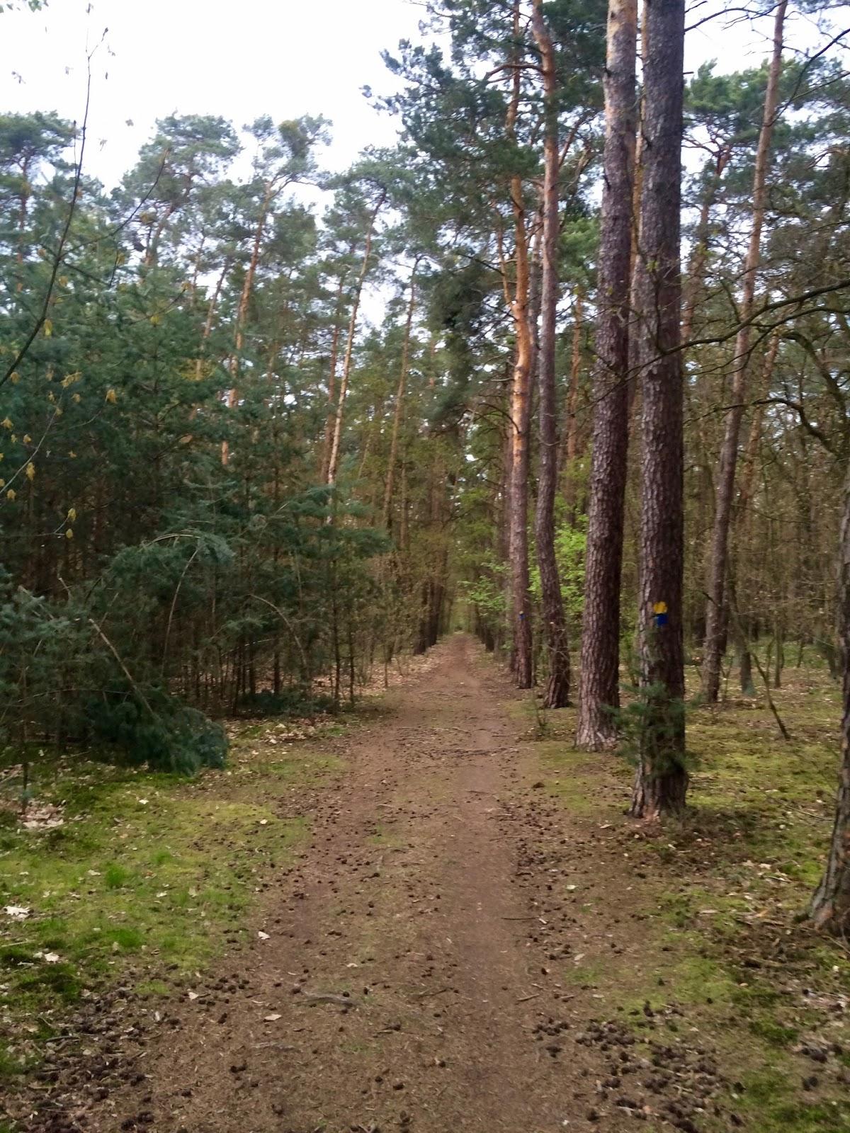 badfd0813fe Zátopkovy běžecké trasy po ibáči - Běhej srdcem