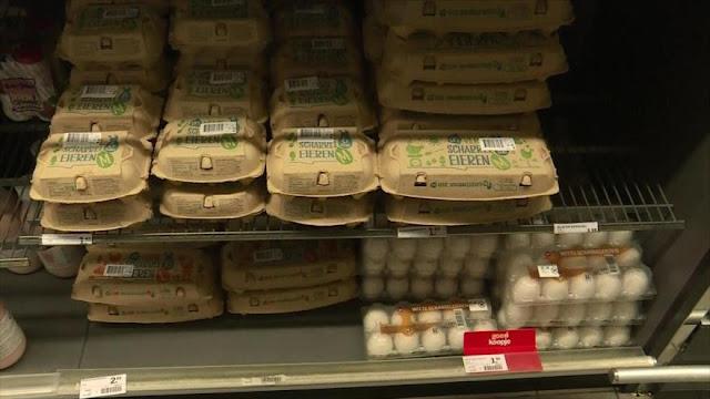 Europa afectada por crisis de los huevos contaminados