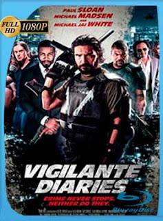 La Venganza de los Vigilantes (2016) HD [1080p] Latino [GoogleDrive] DizonHD