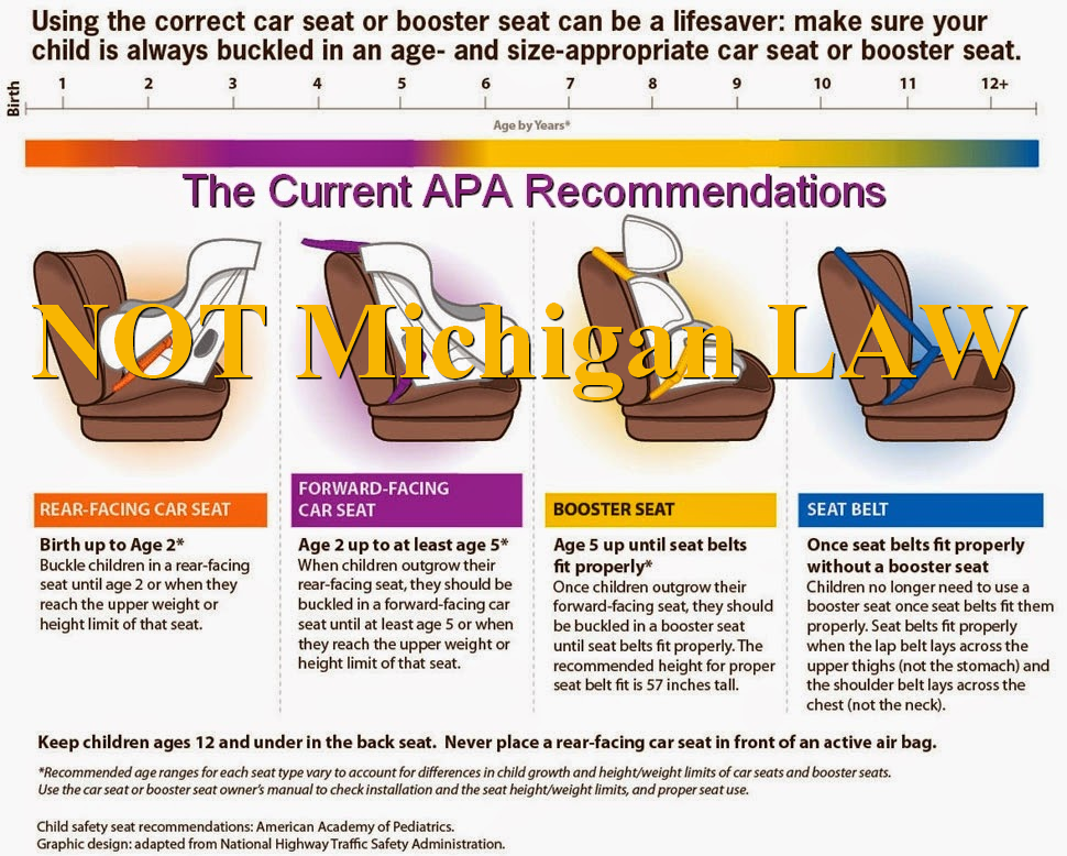 Current APA Recommendations Not Michigan Law