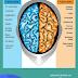 Summary of Left Brain/Right Brain Dichotomy