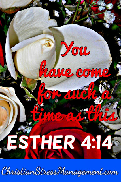 You Have Come For Such A Time As This Esther 4 14