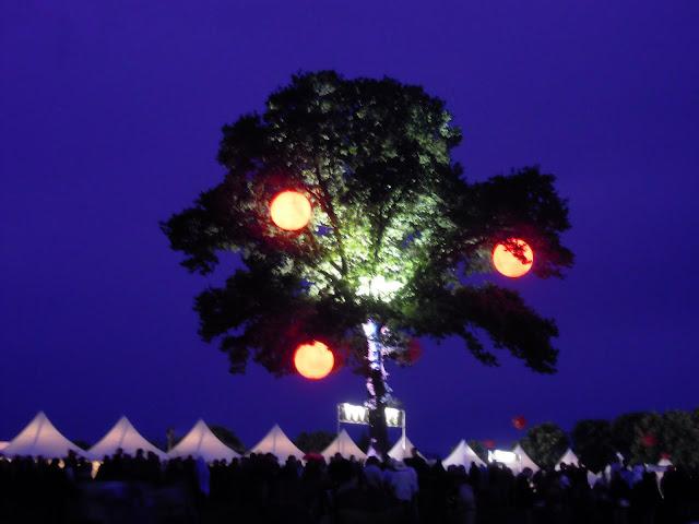 El árbol emblema de Papillons de Nuit