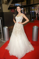 Rukshar Mir designer Anarkali Gown at 64th Jio Filmfare Awards South  2017 ~  Exclusive 114.JPG