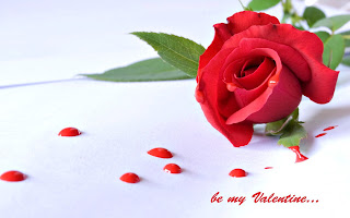 be-my-valentine-single-red-rose-image-for-your-crush.jpg