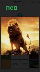 460 слов 4 на вершине стоит грозный хищник лев, упираясь передними лапами в камни и открыв пасть с поднятым хвостом 18 уровень