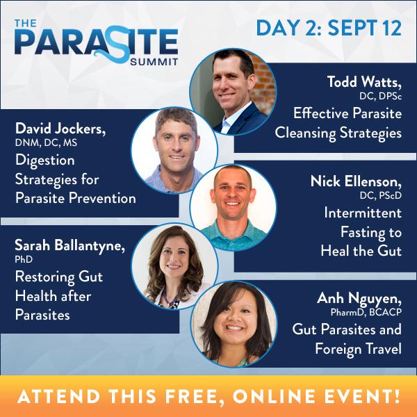 symptome bei parasiten im körper alle.jpg