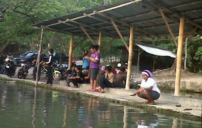 Cara Meracik Umpan Ikan Mas Untuk Air Yang Dingin