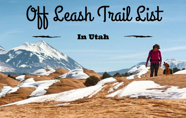 Utah's ULTIMATE Off-Leash Trail List