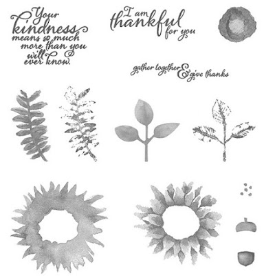 Take a look at the Painted Harvest stamp set by Stampin' Up!