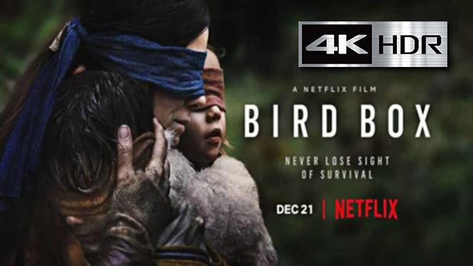 Bird Box: A ciegas (2018) WebRip 4K UHD [HDR] Latino-Ingles