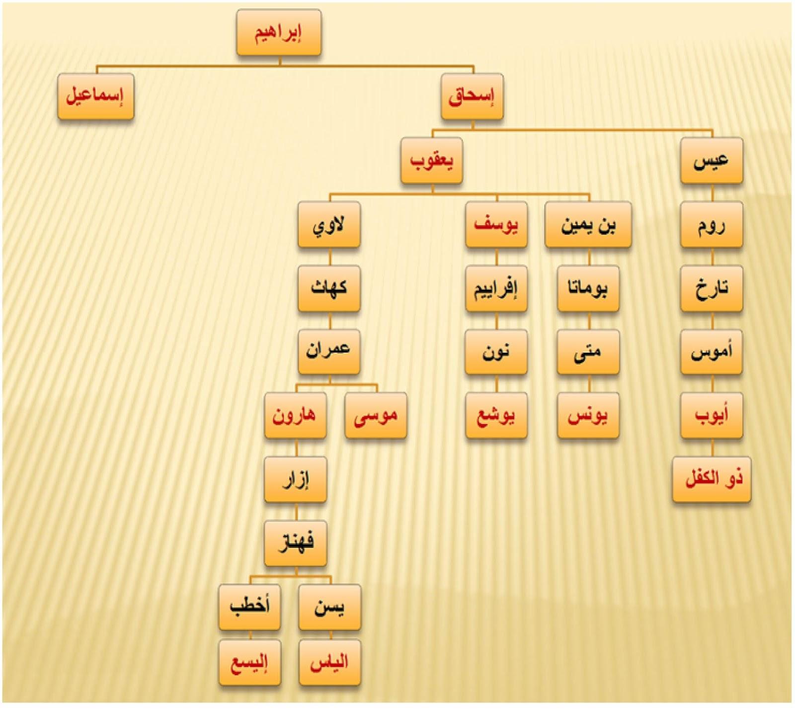 تاريخ الامة الامازيغية اصل العرب واصل لغتهم وماهي سلالتهم الجينية