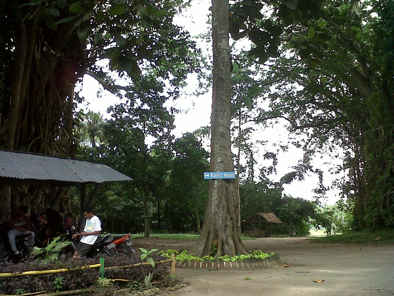 Hidup Sukses Wisata Waduk Danau Paco Nglegok Blitar Jawa