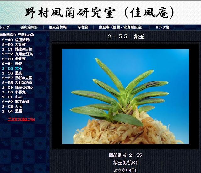http://www.fuuran.jp/2-55.html
