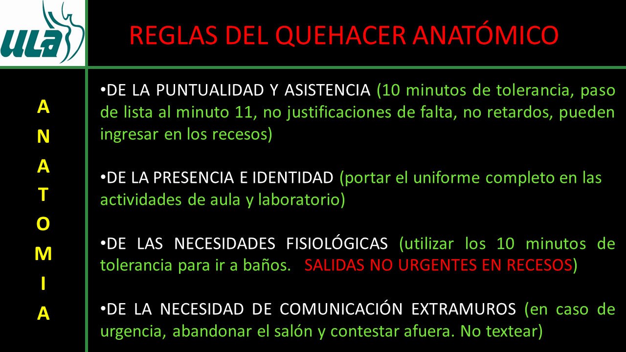 Encantador Libre De La Anatomía Humana En Línea Y Curso De ...