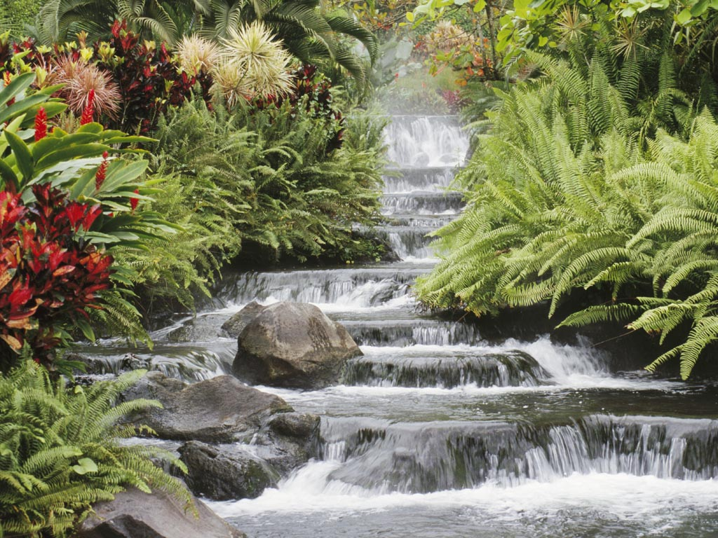Waterfall Wallpapers