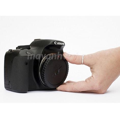 cap body và cap đuôi lens Canon EOS