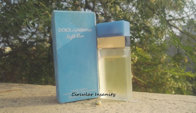 D&G Light Blue Review