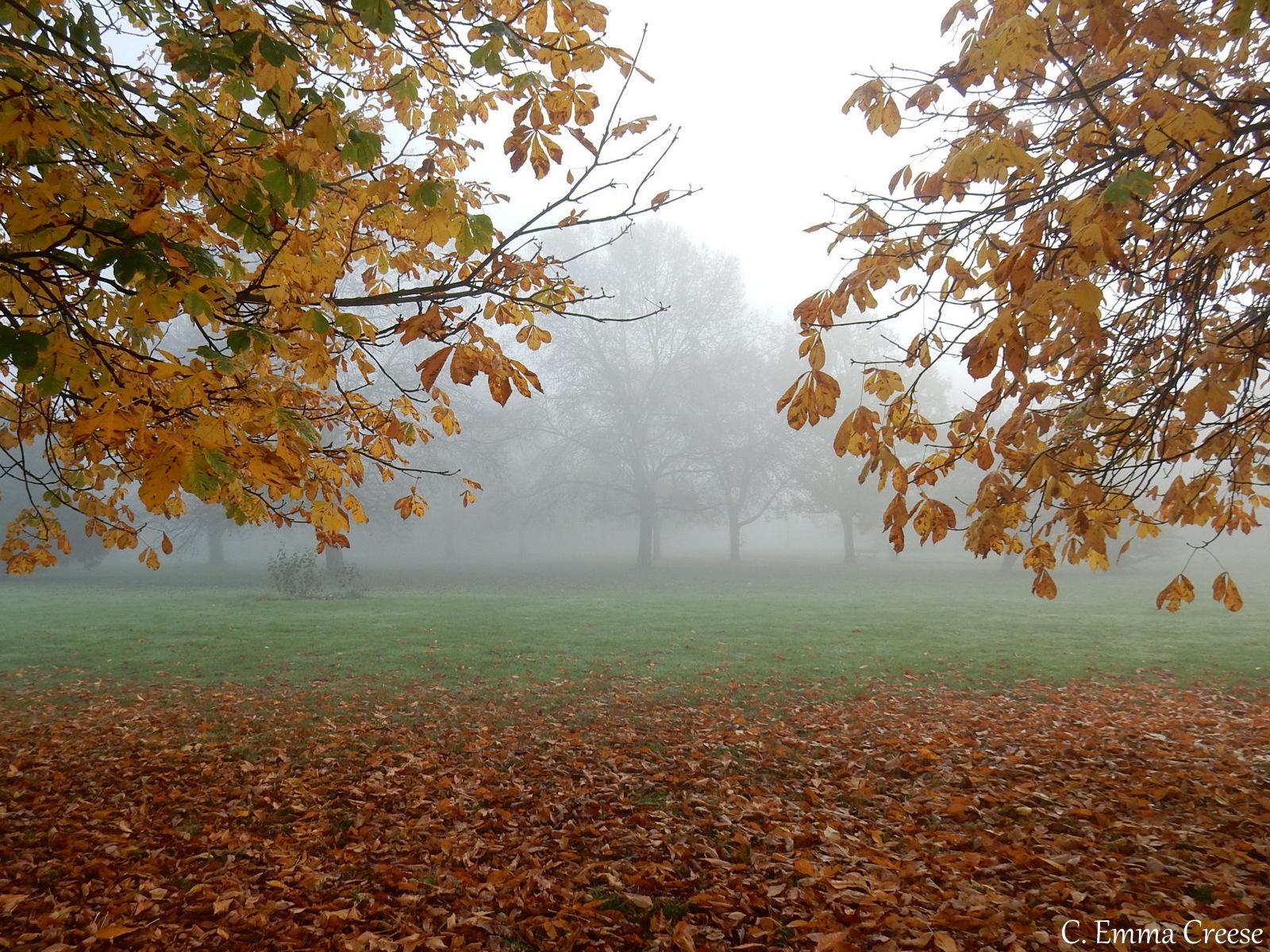 Autumn Leaves London Fog Adventures of a London Kiwi