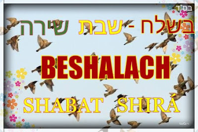 Beshalach Shabat Shirá