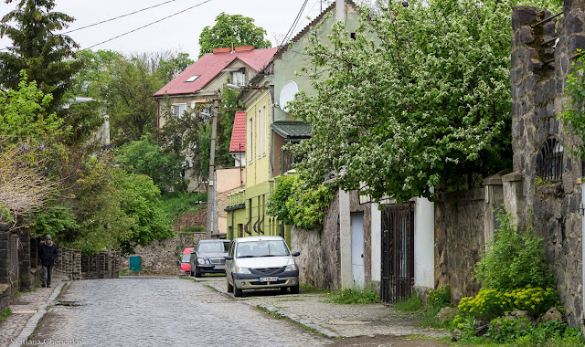 Ужгородська вулиця Ольбрахта