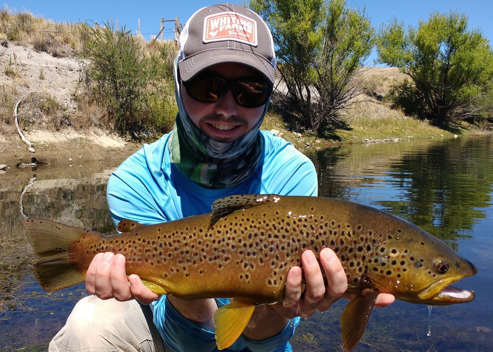 First cast fly fishing diy fly fishing patagonia for Fly fishing wisconsin