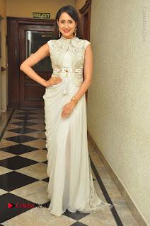 Actress Pragya Jaiswal Stills in Beautiful White Dress at turodu Audio Launch  0059.JPG