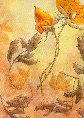 Orange roses_Susan Perez