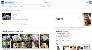 Contoh hasil pencarian gambar dengan google image search