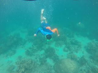 Pulau Abang Snorkelling