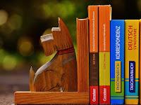 Pengertian, Tujuan, Langkah-langkah, Contoh Sinopsis