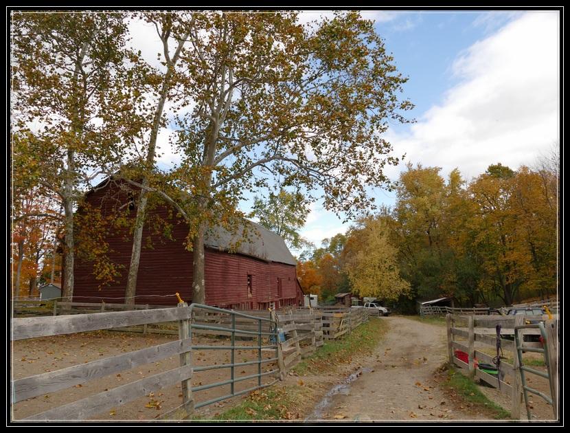Little Brook Farm